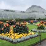 Visiting Sussex Gardens and The Natural Beauty of London
