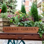 21 Things To Do Near London's Covent Garden